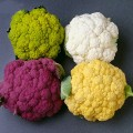 Green, White, Purple, and Orange Cauliflower