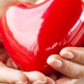 5a5dbff6-5936-41ea-be1f-ae2896032368_heart-in-hands-000012745581_620x350