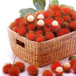 rambutan_fruit-9036e