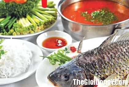 92fbai thuoc hay tu ca chep Món ăn bồi bổ cơ thể từ cá chép