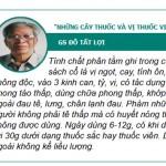 181645_phan-tam-1