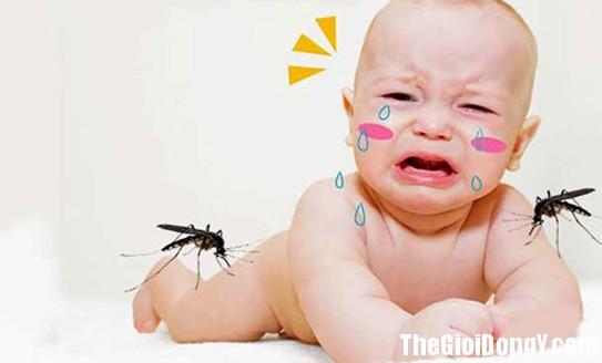 105753 sot xuat huyet Dấu hiệu để nhận biết trẻ bị sốt xuất huyết