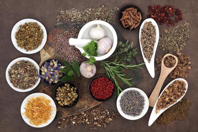 hinh 4 1506761772242 Liệu pháp Đông y trong hỗ trợ tốt trong điều trị bệnh đái tháo đường