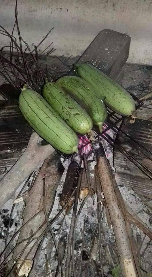 7 2 Vừa được ăn ngon vừa chữa bệnh tiểu đường từ mướp hương