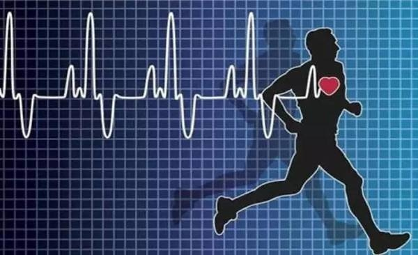suc khoe tim mach 1 093125902 Những nguyên tắc cơ bản giúp bạn cải thiện nhịp tim ổn định