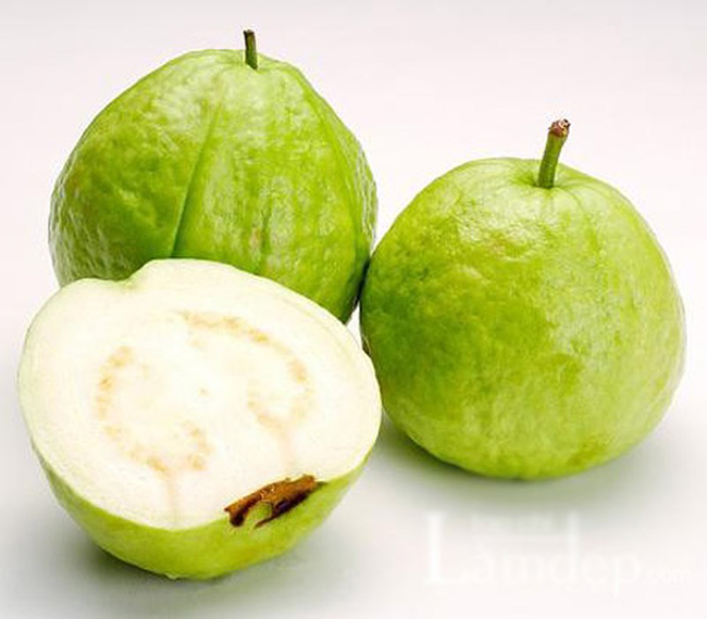 quaoi Ổi   Loại quả rẻ tiền nhưng giá trị dinh dưỡng rất cao