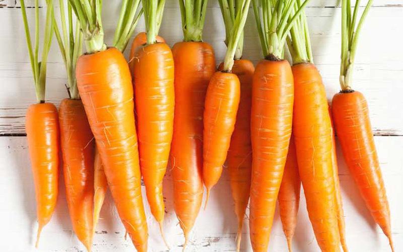 ca rot 154235899798180572311 crop 1542359010644581734138 Cà rốt được dùng làm thuốc như thế nào?