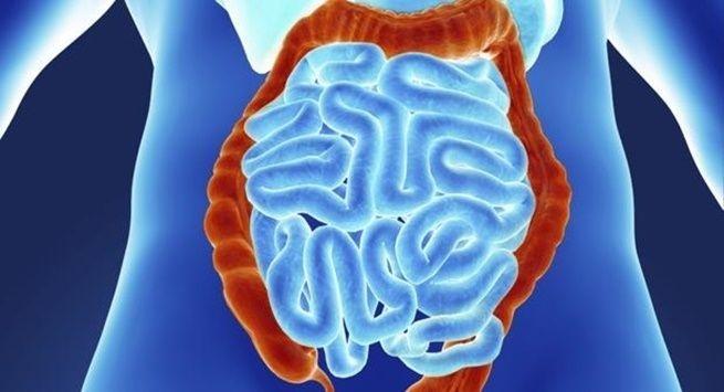 4 factors can make you zinc deficient 131616866 Để khỏe mạnh bạn không thể không biết tới các nguy cơ gây thiếu kẽm đâu