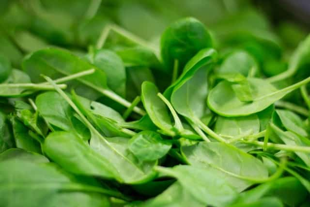 rau bina 2 Lợi ích tuyệt vời của rau bina và 5 công thức chế biến nhanh mỗi ngày